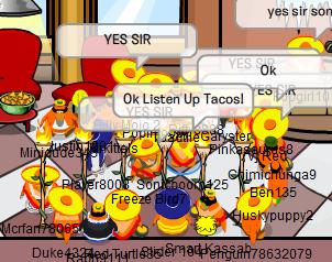 Taco - Igloo